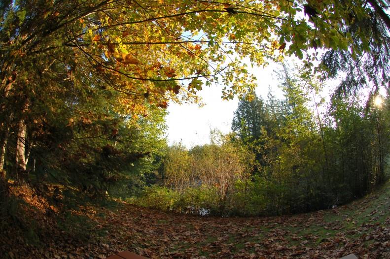 sphere grove
