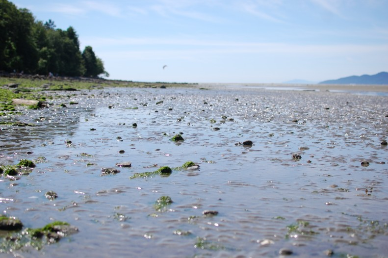 Spanish banks, Vancouver, low tide